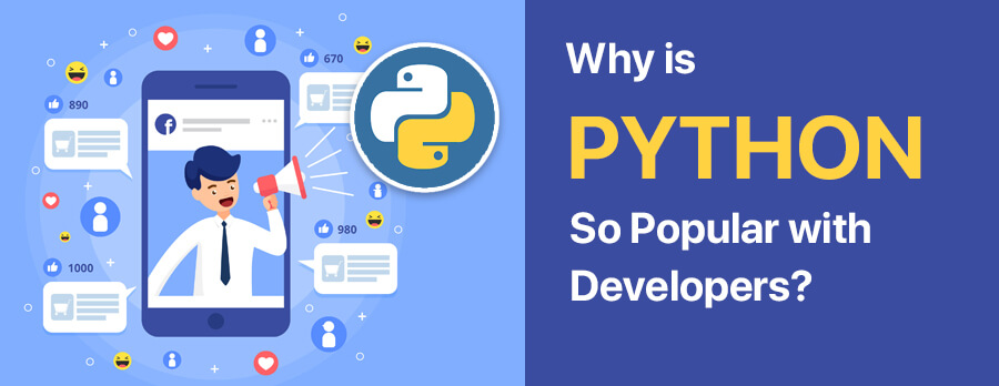 Why is Python So Popular with Developers?